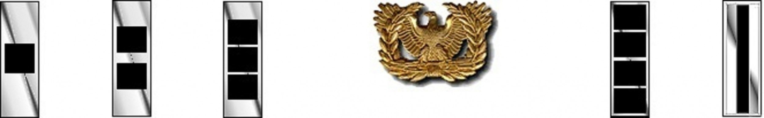 Warrant Officer Rank with Eagle Rising